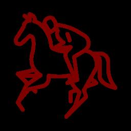 Compétition équestre